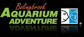 Aquarium Adventure Logo
